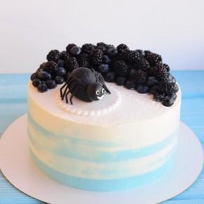№63 Торт паук